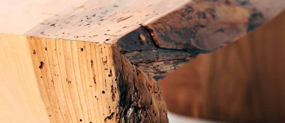 Descubra como eliminar la carcoma la casa de pinturas - Carcoma en los muebles ...