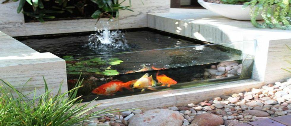 estanque de interior para decorar