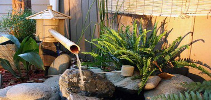 fuentes de agua practicas