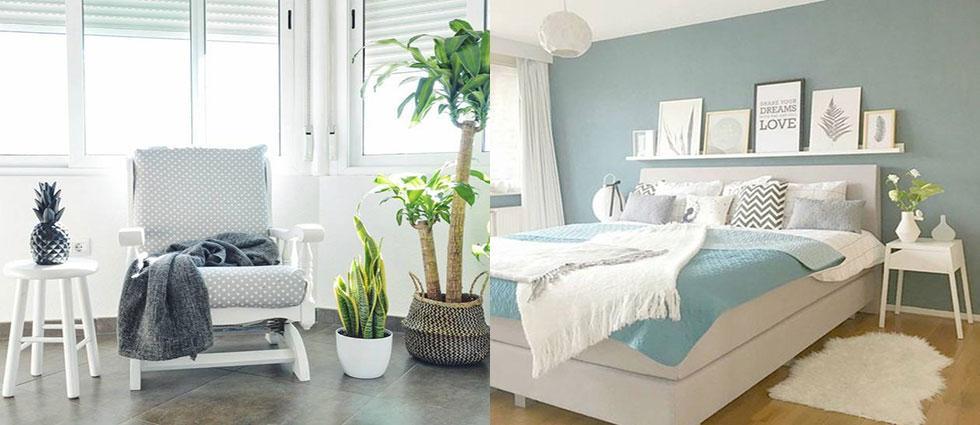 el orden y la limpieza en las casas